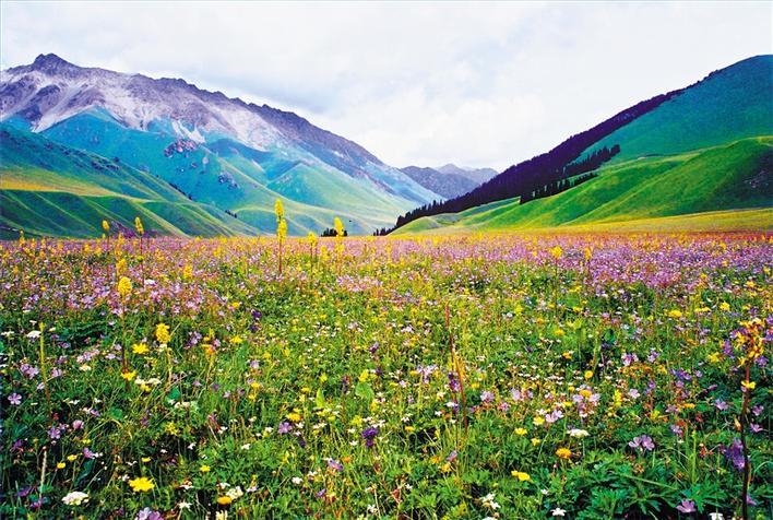 新疆巴州旅游资源十分丰富,沙漠,草原,森林,湖泊,河流,雪山等自然